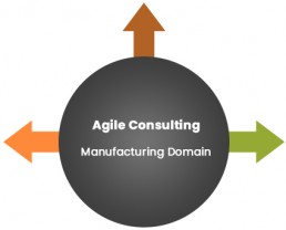 Agile Test Consulting - Manufacturing Domain